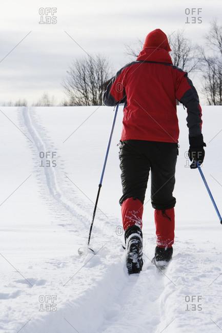 A male skier