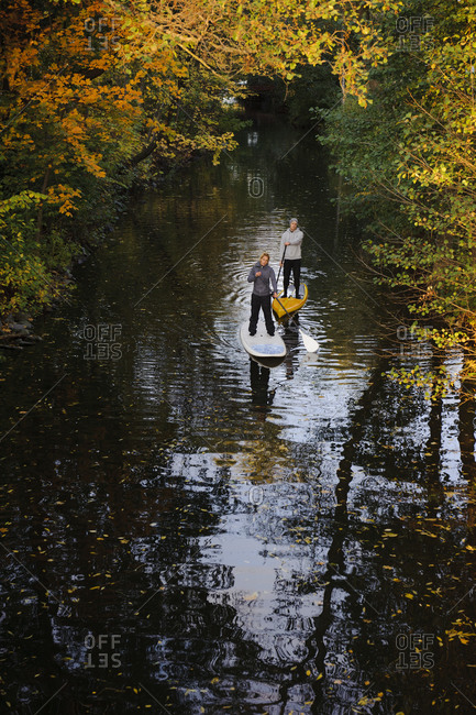 Two people rowing paddle boards in autumn trees, elevated view