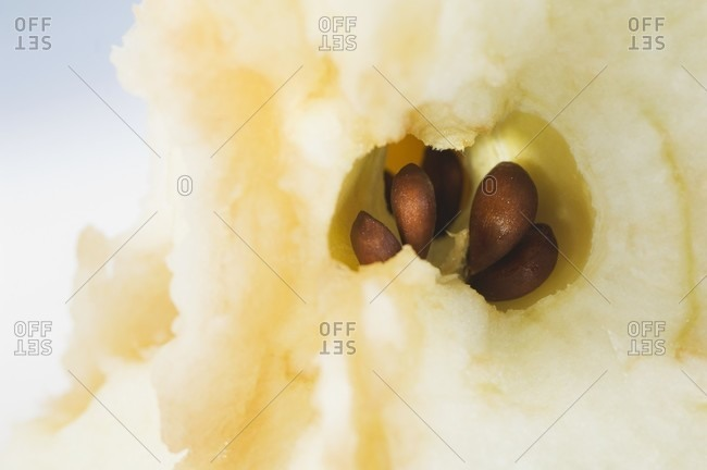 An apple core (close-up)
