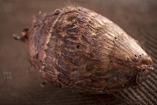 Malanga root (close-up)