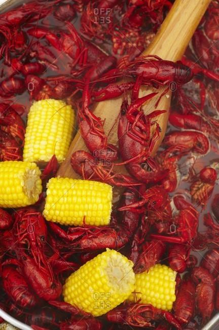 Cajun Crawfish Boil with Corn on the Cob