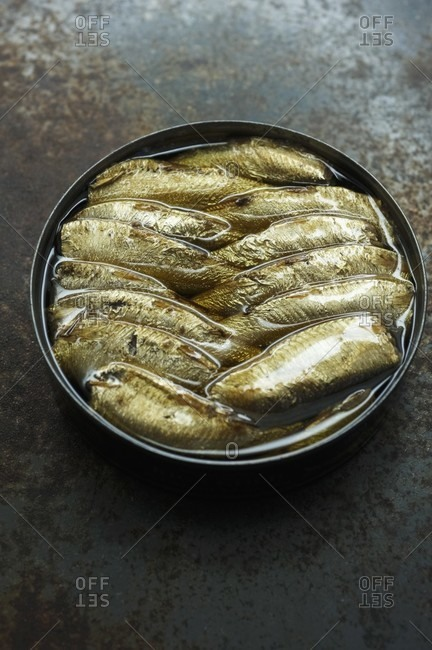 Smoked Sprats in an Open Can