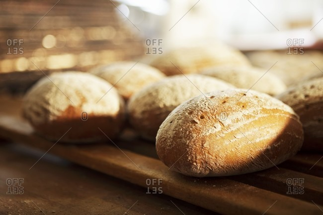Bread rolls on a wooden rack