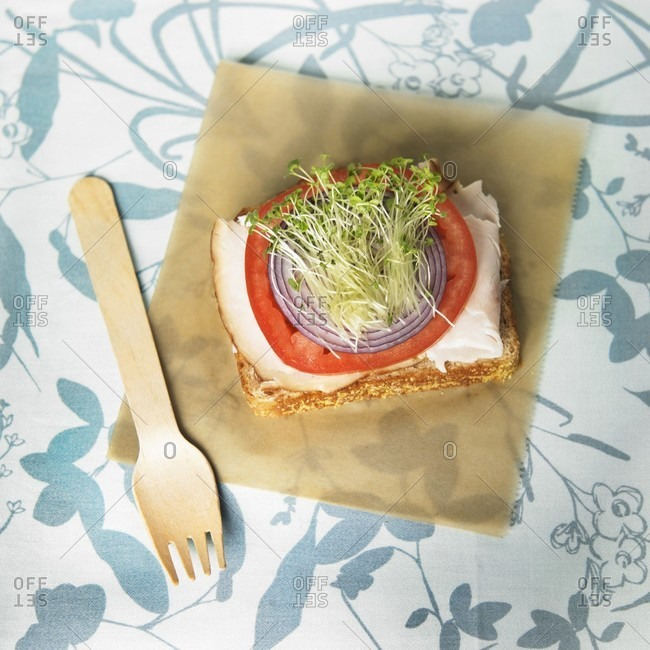 Organic Open Faced Turkey Sandwich with Onion, Tomato and Chia Seed Sprouts