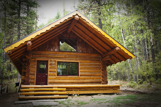 A custom built log cabin sits deep in the forrest in Idaho.