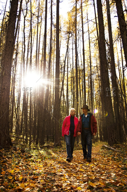 A happy retired couple laughing and smiling while on a hike through a forest during the fall in Idaho.
