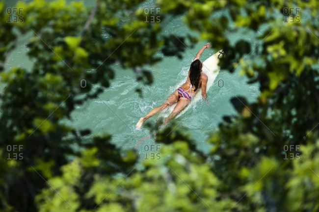 A beautiful woman surfer paddling out to the break framed by lush green trees in Bali, Indonesia.