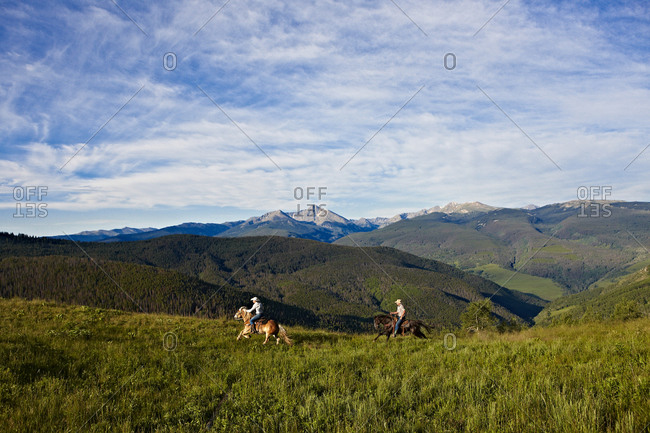 Two cowboys gallop their horses in a high alpine mountain Summer meadow.