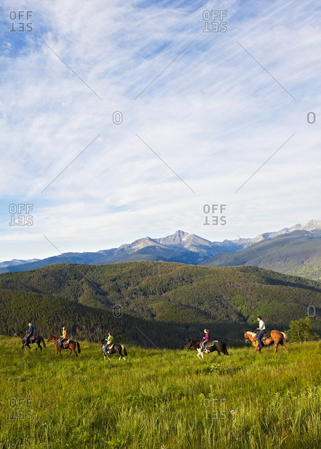 A group of riders enjoys an early morning horseback adventure in a high alpine mountain Summer meadow.