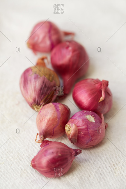 Raw, organic shallots on woven fabric