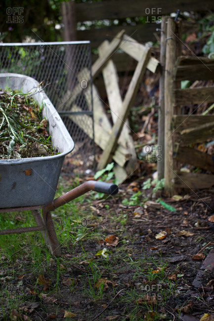 Wheelbarrow full of compost