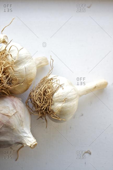 Whole bulbs of garlic