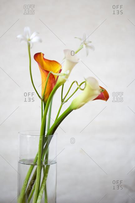 Bouquet of flowers standing in vase