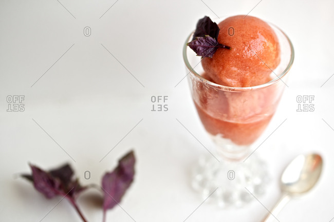Tomato sorbet with basil leaves