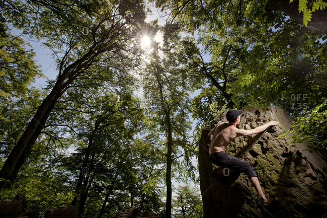 A climber ascends round, standalone boulder deep in a forests of Hameln, Germany.