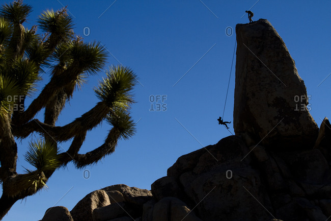 A female climber rappels off of Headstone Rock in Ryan Campground, Joshua Tree National Park, California.