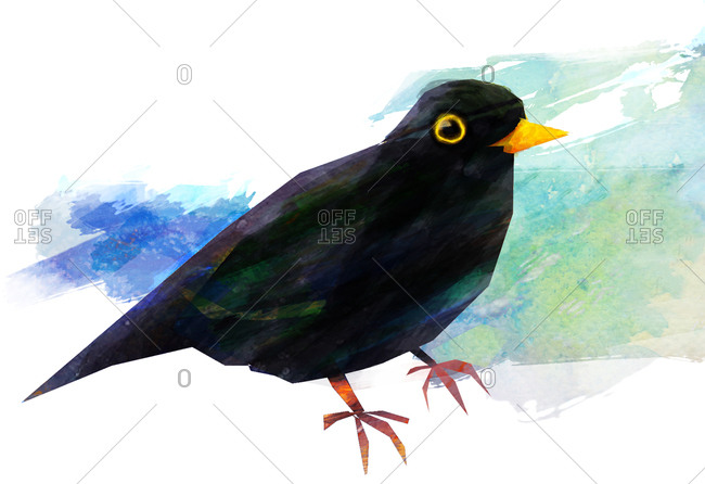 A blackbird with a textured blue background