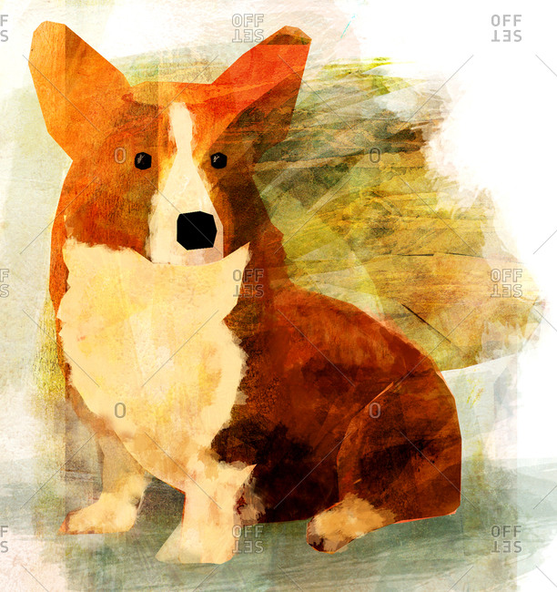 A ginger corgi against a greenish textured background