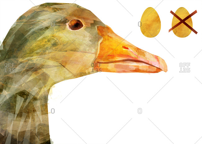 A goose's head with two golden eggs