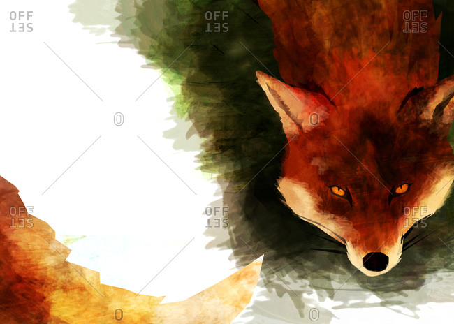 A red brown fox with a long fluffy tail curling around the page