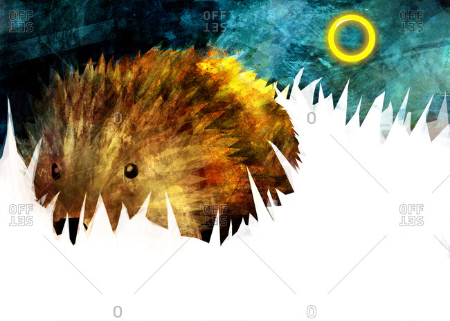 A brown spiky hedgehog against a blue background with a golden ring