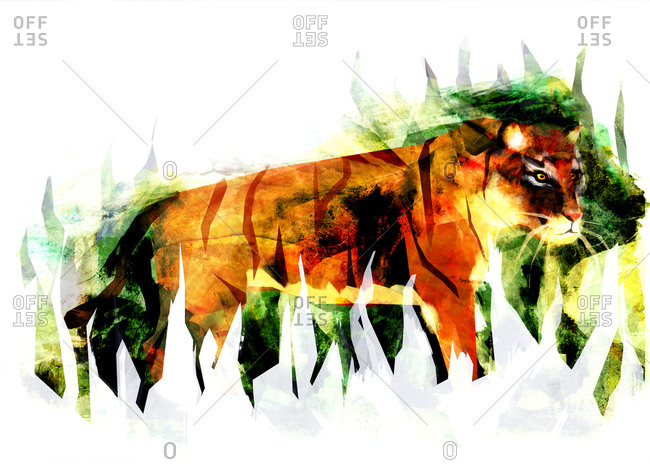 A tiger against white and green grass shapes