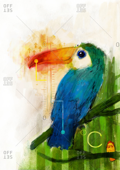 A toucan reading a thermometer