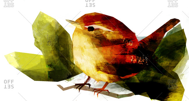 A brown wren with green leaves