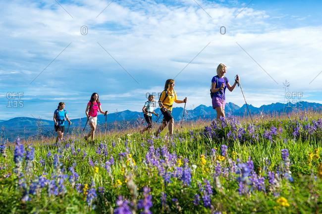 Women hikers crossing a meadow