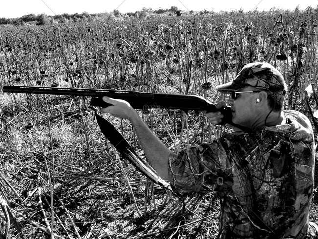 Dove Hunt in B&W.