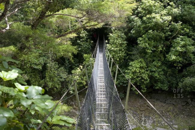 Rope Bridge, Tasman National Park, Pohara, South Island, New Zealand