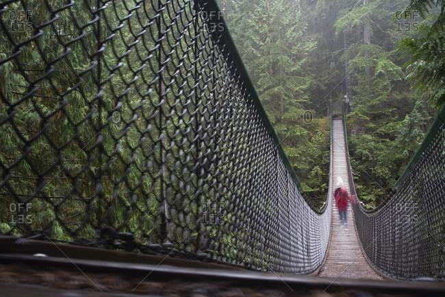 Lynn Canyon, North Vancouver, Vancouver, British Columbia, Canada