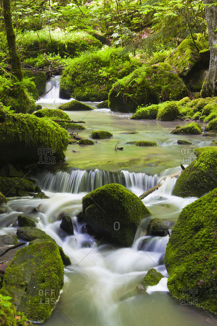 Monbach Creek, Monbach Valley, Black Forest, Baden-Wurttemberg, Germany