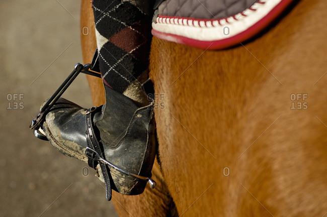 Stirrup and shoe