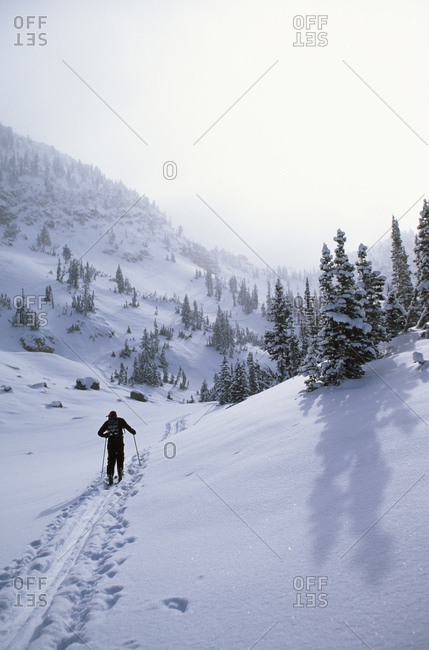 Rear view of person cross country skiing in winter on mountain trail