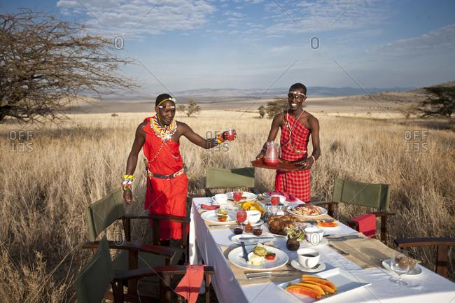 Safari picnic in the savannah