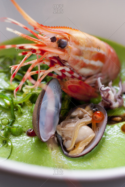 Creamy pea soup served with giant prawn and shell-fish