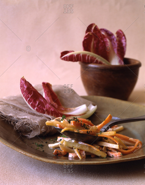 Radicchio leaves and carrots sliced julienne