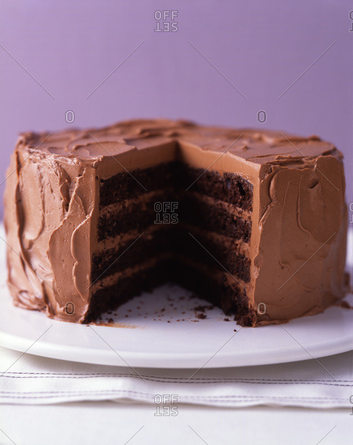 Rich layered chocolate cake presented on white plate