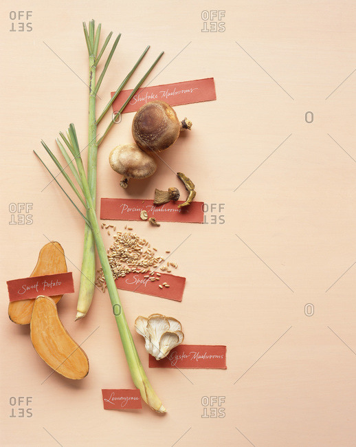Mushrooms and spices arranged on paper