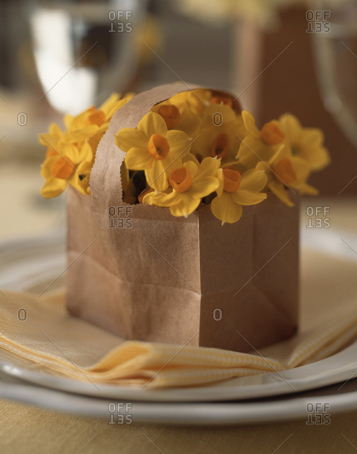 Bouquet of yellow narcissus in paper bag on the table
