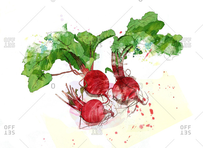 Three beets
