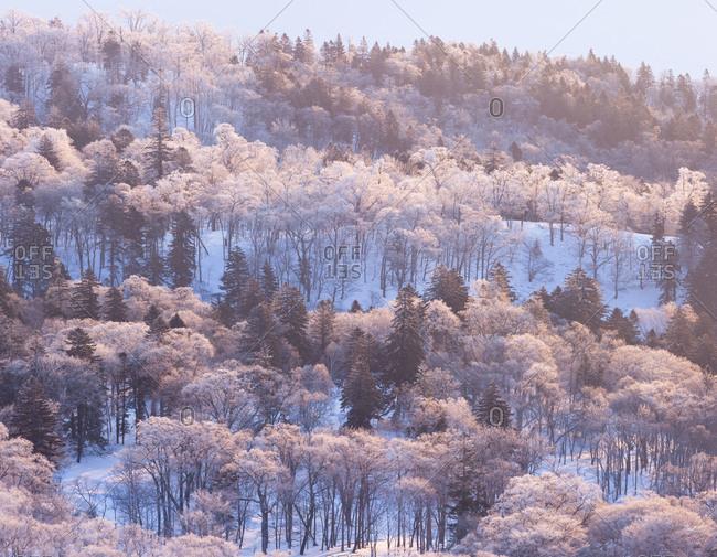 A frosty day at bihoro pass