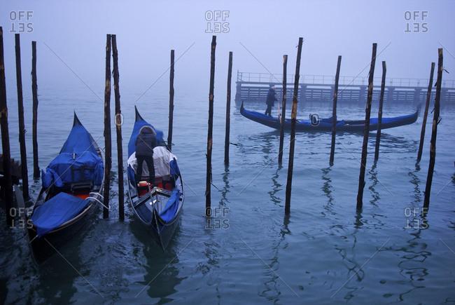 Gondolas in a harbor