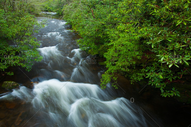 Deep Creek in Great Smoky Mountains National Park, North Carolina