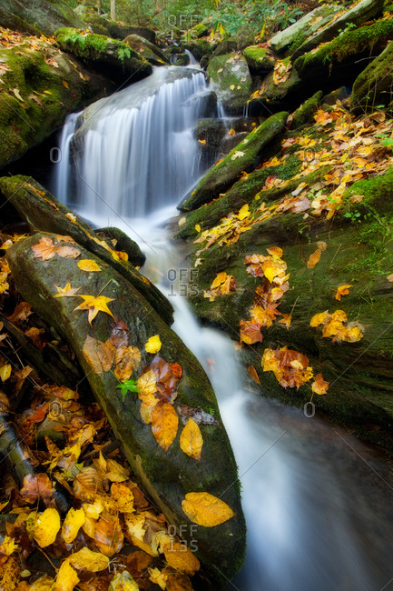 A small cascade in the Great Smoky Mountains National Park, Tennessee in autumn