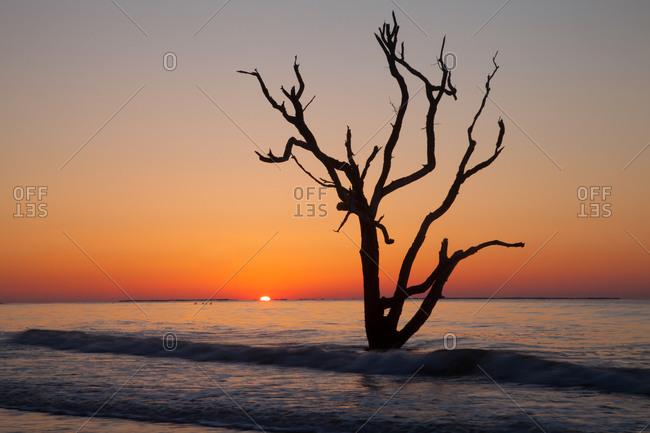 Sunrise over a calm Atlantic Ocean at Botany Bay Wildlife Management Area, Edisto Island, South Carolina
