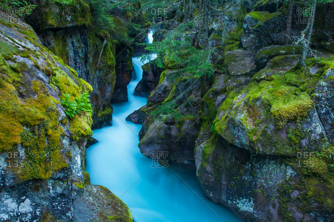 Avalanche Creek rushes through Avalanche Gorge with the blue tones of glacial till Glacier National Park, Montana