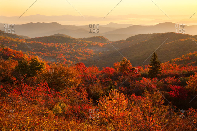 Early morning light on Graveyard Fields in autumn from Black Balsam Road, Blue Ridge Parkway, North Carolina