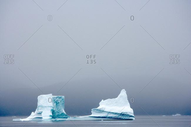 Icebergs float amid thick fog